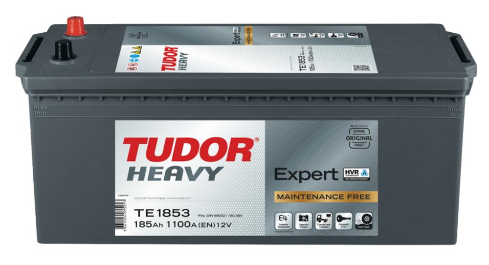 Tudor Heavy